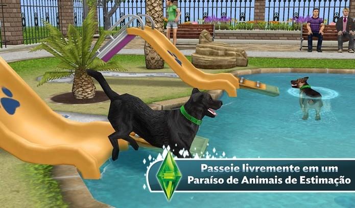 Atualização com novas interações para os pets (Foto: Divulgação)