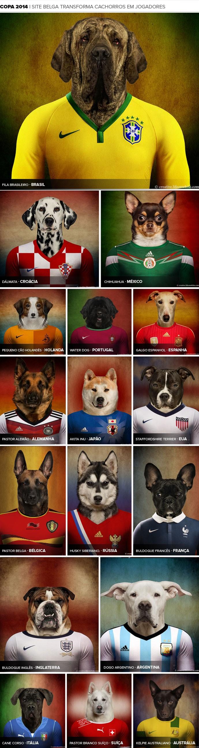 MOSAICO cachorros camisa seleções copa do mundo