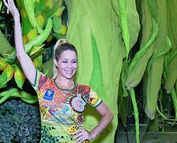 danielle winits (Foto: Vídeo Show/TV Globo)