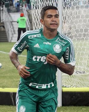 Dudu - Ponte Preta x Palmeiras (Foto: Chico Ferreira / Futura Press)