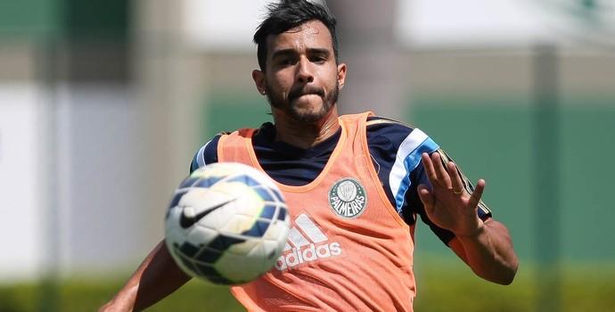 Henrique Palmeiras (Foto: Cesar Greco/Ag Palmeiras/Divulgação)