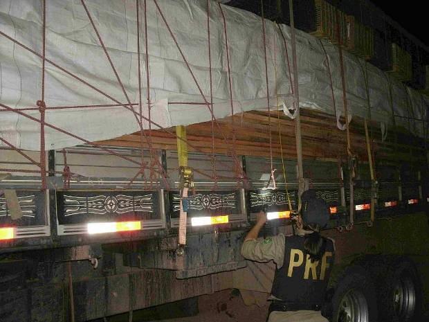 PRF apreende 30m³ de madeira em Dom Eliseu, Pará, durante fiscalização. (Foto: Divulgação / PRF)