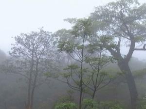 Chuva e névoa muda paisagem na Região do Cariri, no Ceará (Foto: Reprodução/TV Verdes Mares)