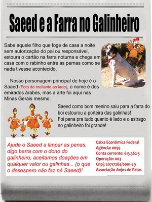 ONG cria campanha para arrecadar dinheiro para pagar prejuízo causado por cão em Alfenas (MG). (Foto: Divulgação/Associação Anjos de Patas)