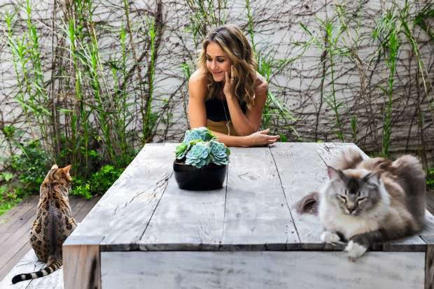 Carolina Rocco e os gatos Jiu e Safira (Foto: Alexandre Disaro/Editora Globo)