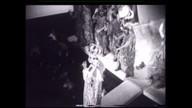 Atentado ao espetáculo 'Roda Viva' completa 50 anos
