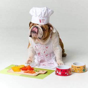 Pimentão, cenoura e chuchu estão entre os ingredientes que podem integrar a dieta dos pets. O buldogue Scorpion ficou com água na boca (Foto: Johnny Duarte/Editora Globo)