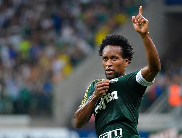 Zé Roberto, gol Palmeiras (Foto: Levi Bianco / Ag. Estado)