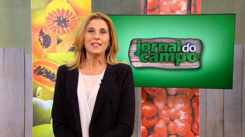 Claudia Gregório comanda o Jornal do Campo (Foto: Reprodução/ TV Gazeta)