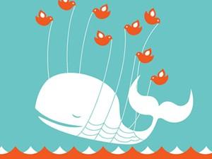 Twitter 'baleiou' após derrota do Brasil. (Foto: Reprodução)