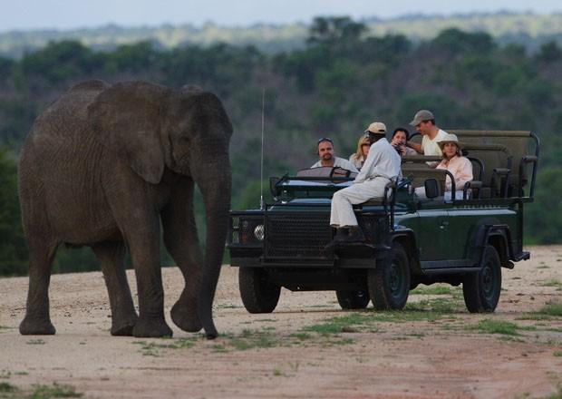 África do Sul: destino perfeito para uma viagem completa (Foto: GW Travel Boutique)