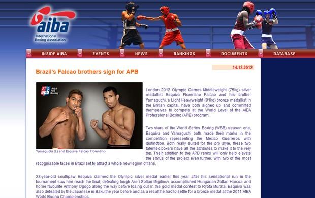 irmãos Falcão boxe contrato (Foto: Reprodução)