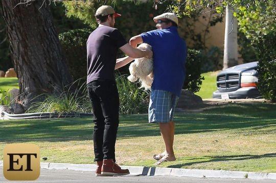Ryan Gosling é visto salvando cachorro nos Estados Unidos (Foto: reprodução/Entertainment Tonight,)
