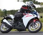 Honda; CBR 1000 RR; 250R; esportiva; lançamento; yamaha; r1; ninja; kawsaki; moto; novidade; 2013 (Foto: Divulgação)