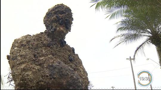 Estátua de Jacques Costeau é retirada do mar para ser restaurada em Ubatuba