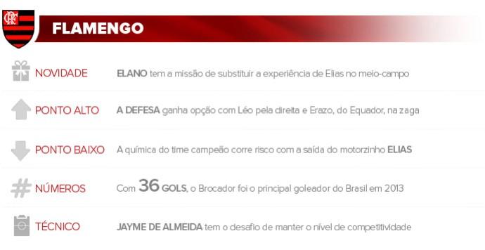 Apresentacao_FLAMENGO_2 (Foto: Infoesporte)