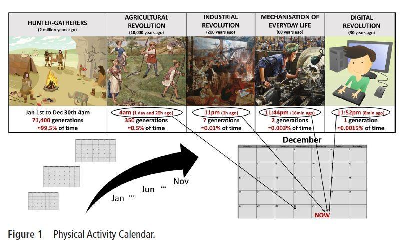 Calendário da Atividade Física (Foto: Bruno Smirmau)