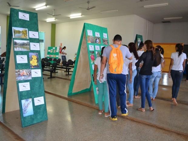 Fotos foram expostas no pátio da escola (Foto: Magda Oliveira/G1)