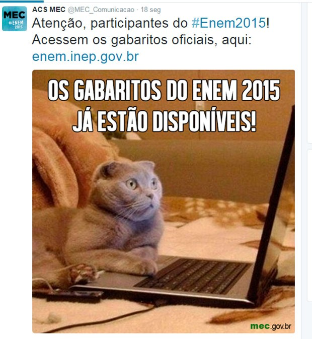 MEC  publicou o aviso da publicação dos gabaritos no Twitter. (Foto: Reprodução/Twitter)