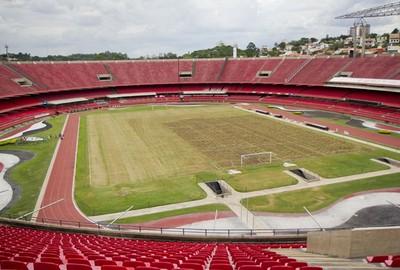 Gramado Morumbi (Foto: site oficial do São Paulo FC)