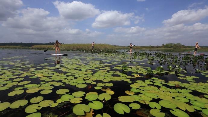Água tranquila é ideal para iniciantes na prática de stand up paddle (Foto: TV Bahia)