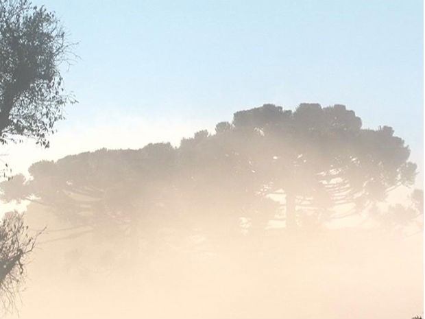 Guarapuava amanheceu com 2,7ºC  (Foto: Eduardo Andrade / RPC TV)