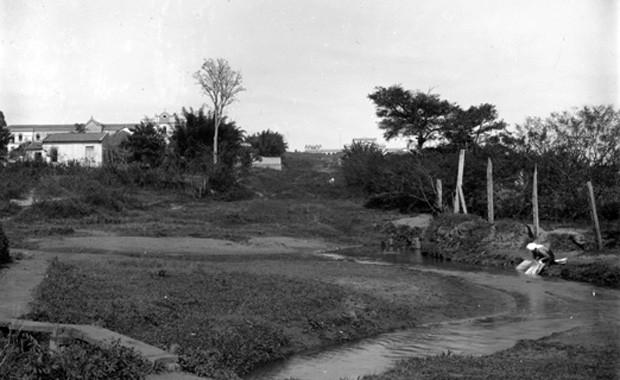 Imagem de negativo de vidro mostra o Riacho do Ipiranga na região onde hoje é o Monumento à Independência. Não há informações sobre a data específica da imagem, mas sabe-se que foi feita antes das obras do parque, na década de 1920 (Foto: Acervo do Museu Pasulista da USP/José Rosael / Hélio Nobre)