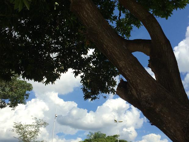 Previsão é de tempo instável em MS, diz Inmet (Foto: Isabela Cavalcante / G1 MS)