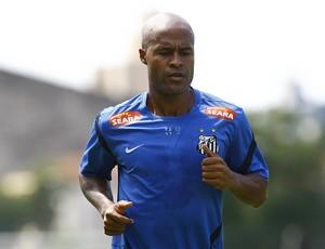 Marcos Assunção treino Santos (Foto: Ricardo Saibun / Divulgação Santos FC)