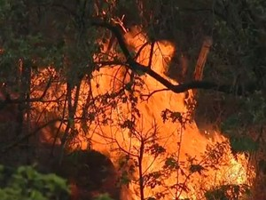 Tempo seco e queimadas prejudicam qualidade do ar em Jundiaí (Foto: Reprodução/TV TEM)