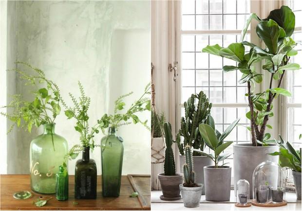 Verde Greenery, tom da Pantone para 2017, invade a decoração (Foto: Reprodução / Tisane Infusion / Pinterest | Reprodução / My Unfinished Home / Pinterest)