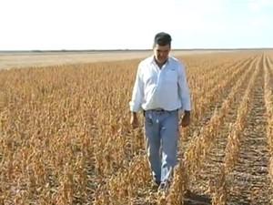 José Valverde aumento a área de produção da propriedade em Formoso do Araguaia (Foto: Reprodução/TV Anhanguera)