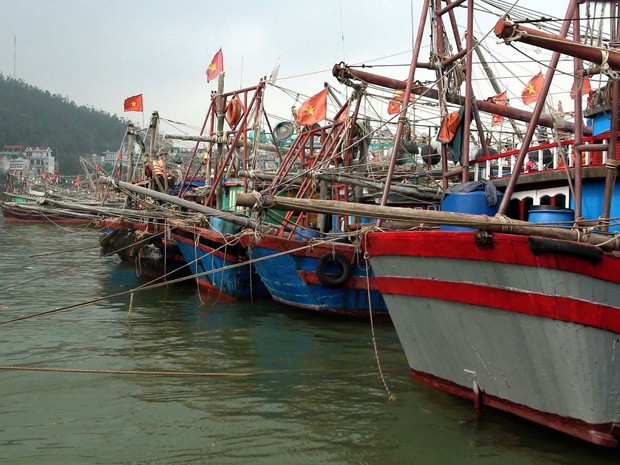 Barcos de pesca foram ancorados em porto no norte da província de Thanh Hoa, antes da chegada do supertufão Haiyan (Foto: Vietnam News Agency/AFP)