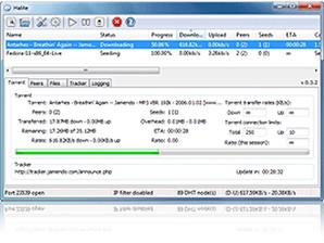 My Torrent Client