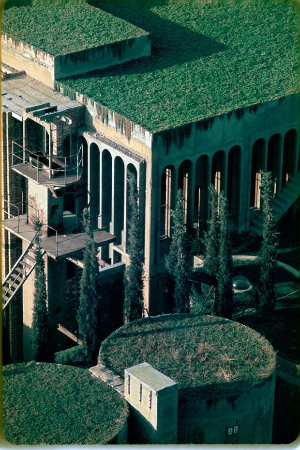 A vegetação cobre boa parte da área externa da antiga fábrica (Foto: Reprodução/Quiosque digital)