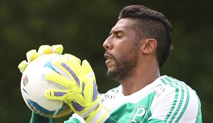 Aranha Palmeiras (Foto: Cesar Greco/Ag Palmeiras/Divulgação)
