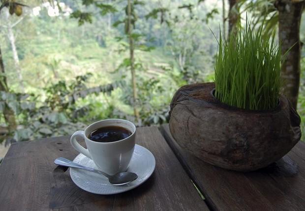Café (Foto: EFE)