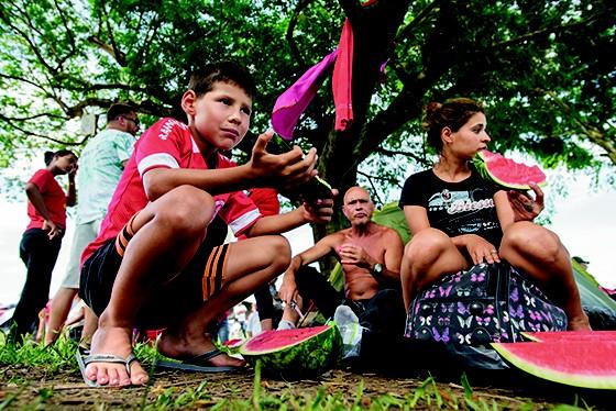 SOMBRA E MELANCIA FRESCA  A família de Vitor Aldemir buscou refúgio na árvore; no acampamento do MST, a sombra era muito disputada (Foto:  Arthur Kolbetz)