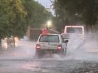 Chuva e vento causam estragos em cidades da região de Ribeirão Preto