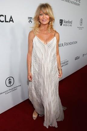 Goldie Hawn em evento beneficente em Los Angeles, nos Estados Unidos (Foto: Jonathan Leibson/ Getty Images/ AFP)