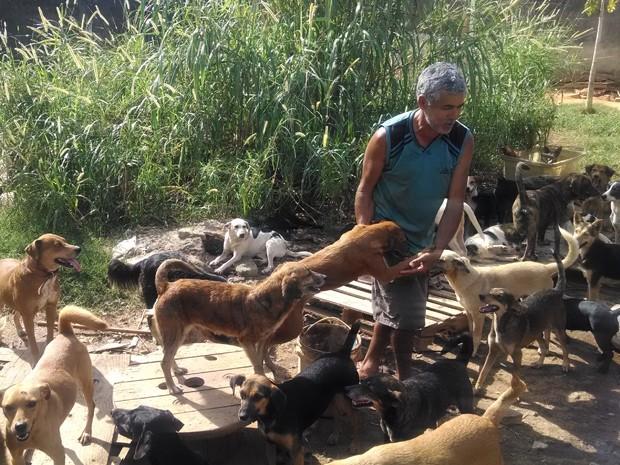 """""""Seu Paulo"""" cuida de cerca 90 cães em um terreno em Campo Grande. (Foto: Cristina Boeckel/ G1)"""