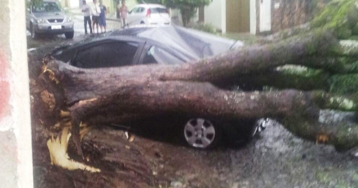 Chuva provoca alagamentos e derruba árvores em Divinópolis - Globo.com