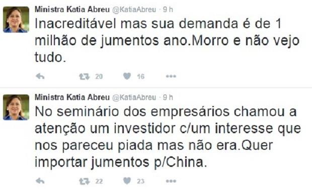 Ministra contou sobre interesse em jumentos brasileiros em sua conta no Twitter (Foto: Reprodução/Twitter)