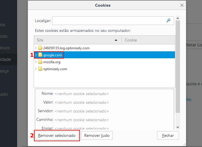 Apagando os cookies de um site no Firefox (Foto: Reprodução/Edivaldo Brito)