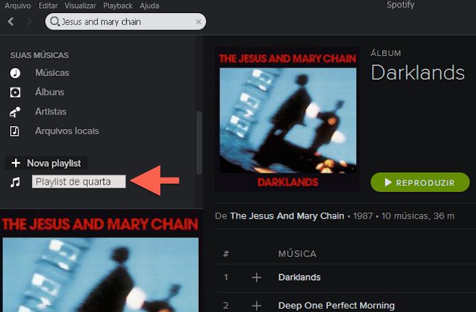 Determinando um nome para uma playlist no Spotify (Foto: Reprodução/Marvin Costa)