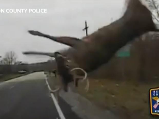 Vídeo gravado pelo carro patrulha mostra momento do atropelamento (Foto: AP)