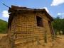 Mal de Chagas: Brasil tem cerca de dois milhões de portadores da doença