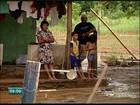 Cheia do Rio Doce alaga casas e plantações em Linhares, no ES