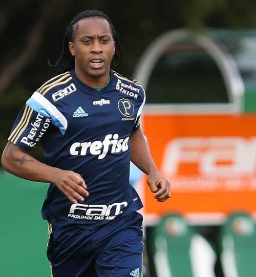 DOR DE CABEÇA (Cesar Greco/Ag Palmeiras/Divulgação)