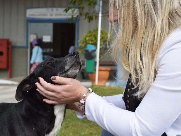 Funcionários do hospital dão carinho ao cachorro (Foto: Luiz Souza/RBS TV)